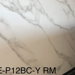 ASE-P12BC-Y-RM