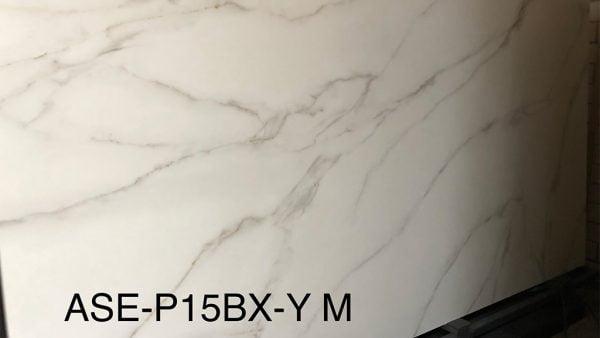 ASE-P15BX-Y-M